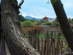 Oaxaca Community
