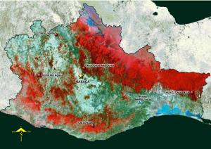 El espaciomapa está hecho a partir de imágenes Landsat TM (mapeador temático) tomadas en el año de 1993 con una combinación de falso color normal que permite distinguir:  •En tonos rojo,  la vegetación cuando es verde.  •En color azul tenue, las grandes localides urbanas.   •En color negro, las presas y lagos cuando son profundos y transparentes, cuando no lo son, aparecen en tonos de azul.  •En tonos rosa, las áreas de cultivo de riego en lugares planos.  •En tonos blancos, áreas de cultivo de temporal.