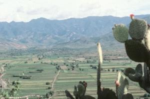Valleys minifundia